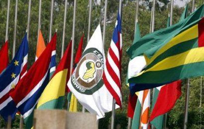 CEDEAO : la nouvelle feuille de route pour la monnaie unique bientôt examinée