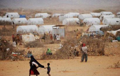 5.000 Ethiopiens fuient vers le Kenya après la mort de 9 civils