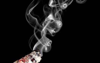 Côte d'Ivoire : Chaque année,5000 personnes meurent à cause du tabac