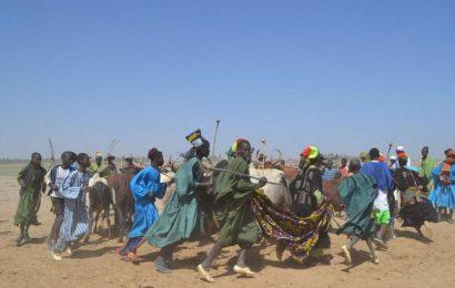 Mali : une vingtaine de morts dans une attaque