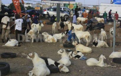 La fête d'Al Adha, ou Aïd El Kebir (Tabaski) sera célébrée dans la division dans différents pays