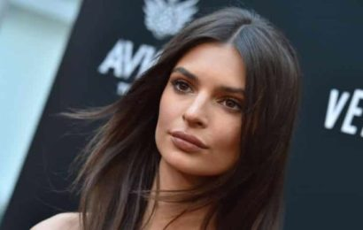 L'actrice Emily Ratajkowski affole la toile ( photo)