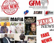 Présidentielle 2019: Des mercenaires de la plumes pris en flagrant délit de mensonge